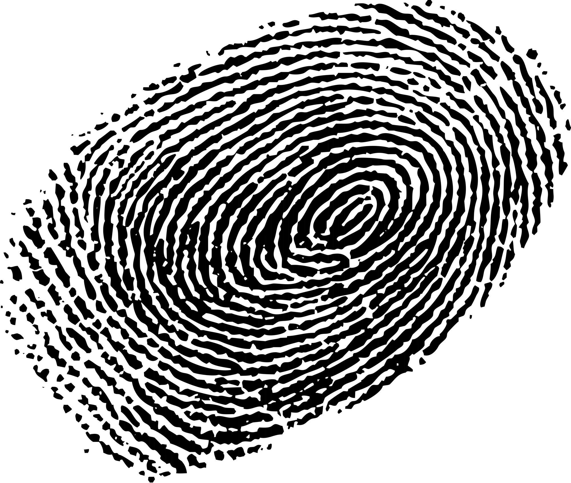 Fingerprint Graphic